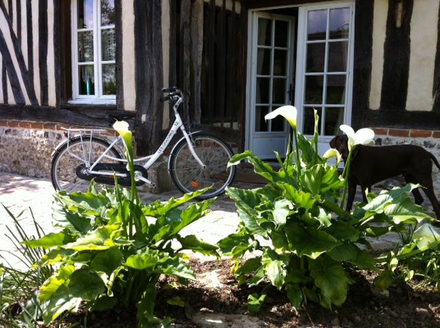 Location de vélos dans le Marais-Vernier