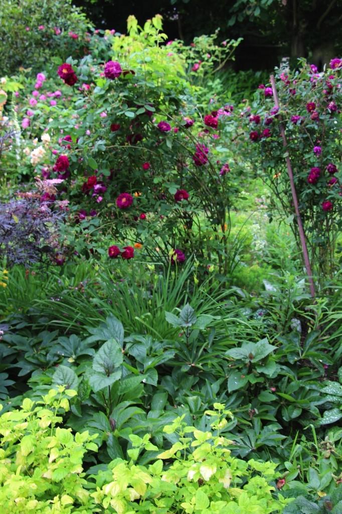 Jardin Chasse Spleen